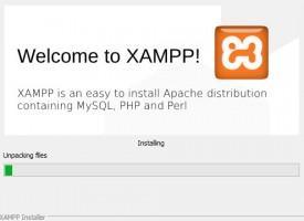 วิธีการติดตั้ง XAMPP จำลอง WebServer