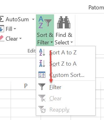 Filter-Excel2013-2
