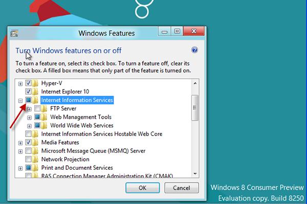 IIS-Windows8-2
