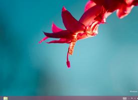 ปรับขนาดหน้าจอ Screen Resolution Windows 8.1