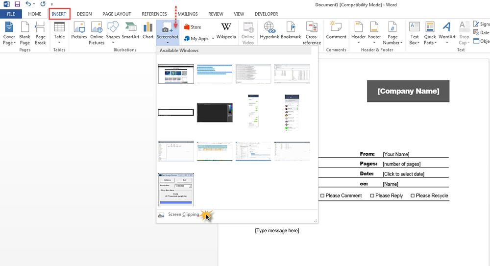 SceenShot-Microsoft Word