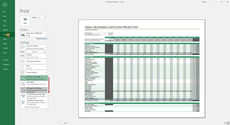 Fit Sheet Microsoft Excel 2016