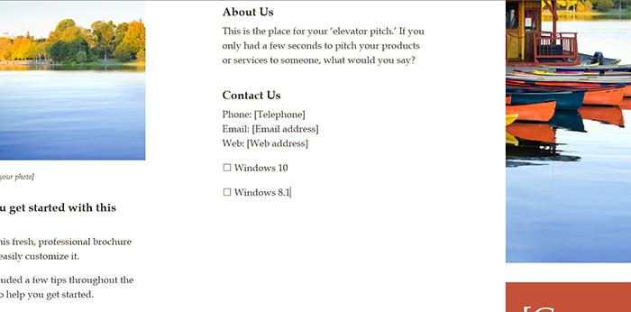 Checkbox Microsoft Word 2016-4