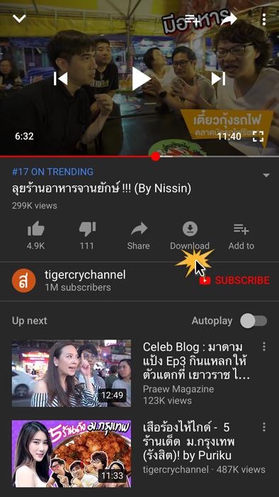 ดาวน์โหลดวิดีโอ YouTube (1)
