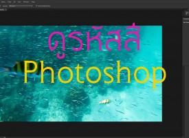 ดูรหัสสี Photoshop สามารถเช็ครหัสสีจากภาพได้เลย