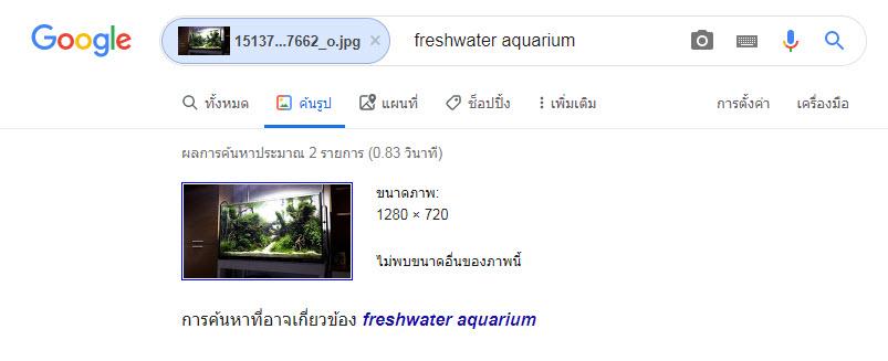 Google image Search ค้นหา-4